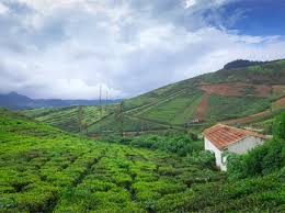Car Package 1 Night / 2 days Coorg Package: Mysore - Coorg - Mysore