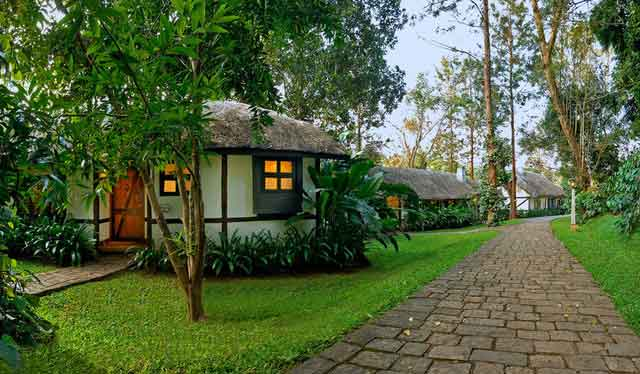 Coorg package from Bangalore by Car