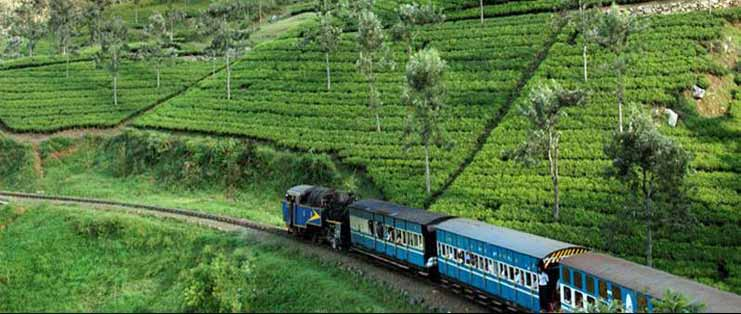 Ooty bus package from Bangalore